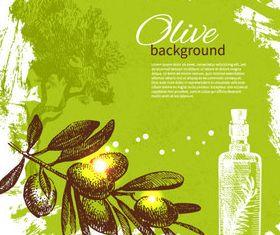 Vivid Olives 4 vector