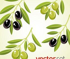 Vivid Olives 7 vector