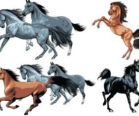 Color Horses graphic vector