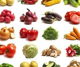 Vegetables graphic vector graphics
