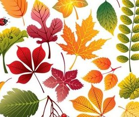 Colorful Leaves free vector