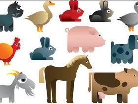 Funny Bright Animals vector