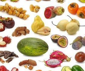 Fresh Fruits graphic shiny vector