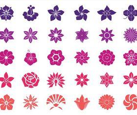 Flower Blossoms Graphics vectors