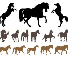 Horses Silhouette Set vector