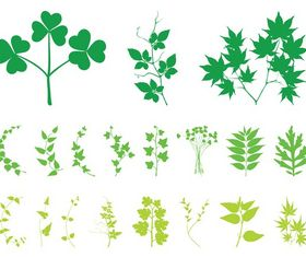 Plant Leaves And Branches art vector