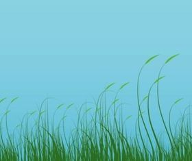 Grass Graphics vector