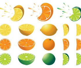 Citrus Fruits free vector