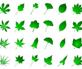 Green Leaves vector graphics