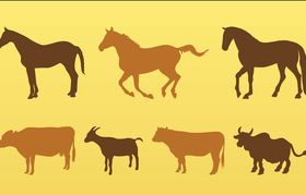 Livestock Animals Silhouettes art vector graphics
