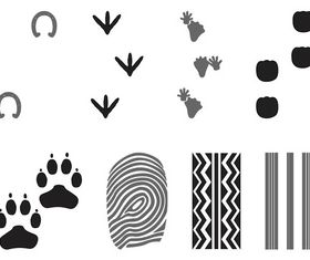 Prints And Traces vector