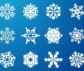 Snowflake Graphics vector