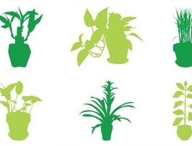 House Plants Silhouettes vector