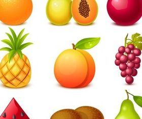 Different Shiny Fruits set vector
