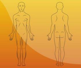 Body Illustrations vector material