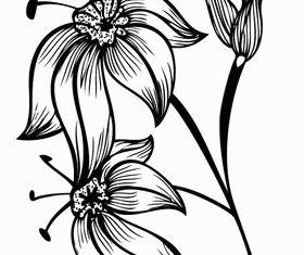 Flourish Design Image vector