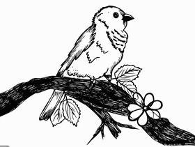 Cute Bird on Tree Branch Art vector material