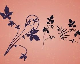 Floral Design Elements vector graphics
