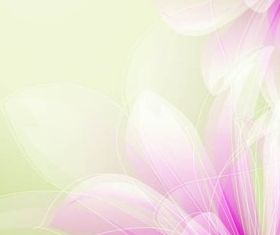 Shiny Floral Backgrounds 17 set vector