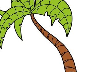 Palm Tree Stock Image vector