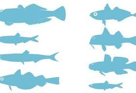 Adriatic SeFish Silhouettes Free vector material