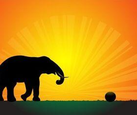 Silhouette Elephant in Sunset Wallpaper vector