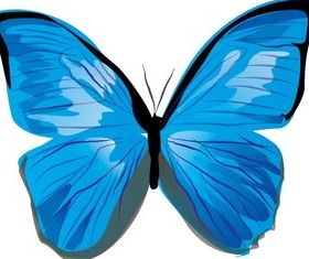 Butterfly Image free vector