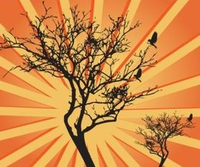 Tree Sunburst Graphics vector
