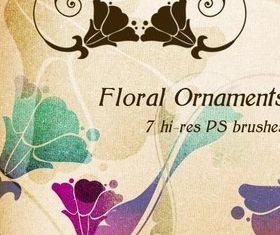 Floral Ornaments and Photoshop Brushes shiny vector
