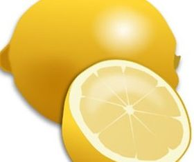 Fresh Lemon and Lemon Slice Realistic Clip Art vector