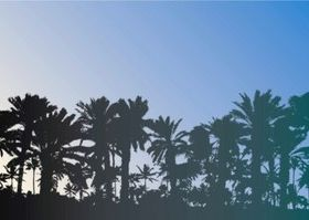 Free Palm Trees set vector
