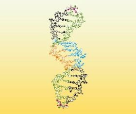 Colorful DNA vector