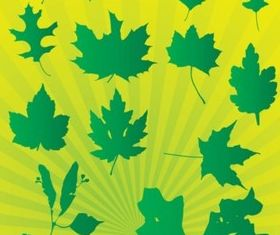 Leafs Graphics set vector