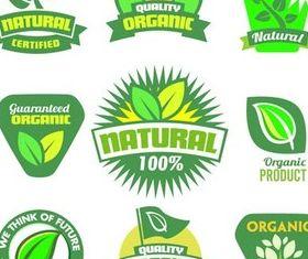 Nature Green Labels art vector