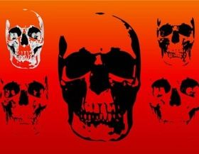 Free Skull vector graphics