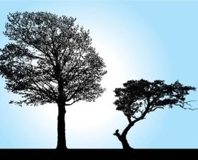Tree Silhouette vectors graphic