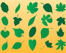 Vector Leaf Silhouette Art set