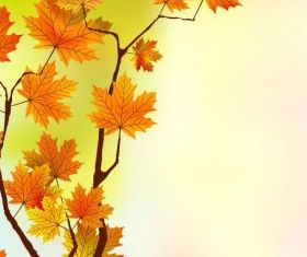 maple leaf background 04 vector