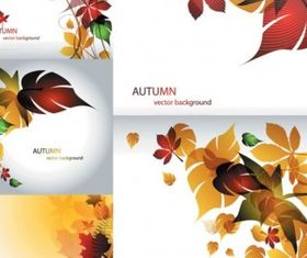 Maple leaf theme vector graphics