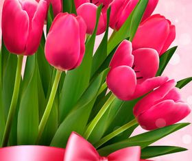 Backgrounds with Tulips design vectors