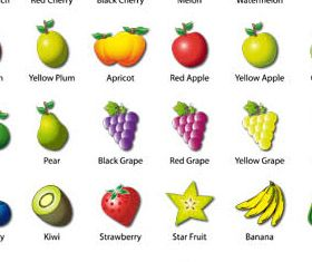 Fruits graphic vector