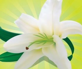 White Orchid free shiny vector