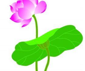 lotuscg imitate vector