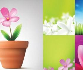 flowers and plant vectors