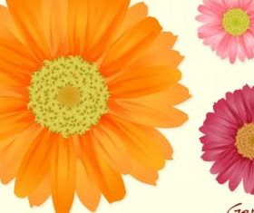Summer Flowers graphic vector