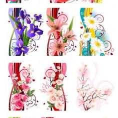 several flowers free vector design