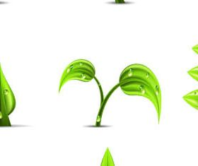 Green Plants graphic set vector