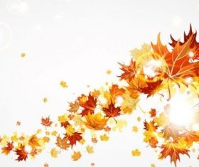 maple leaf background 01 vector graphics