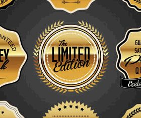 Golden Luxury Labels Set vector