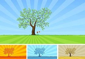 trees and grass flowers vector graphics